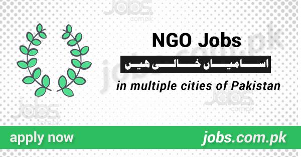 ngo jobs 2019